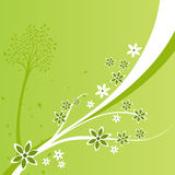 Um fundo do projeto floral Foto de Stock