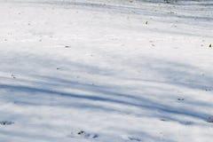 Um fundo nevado vazio no inverno Imagens de Stock Royalty Free