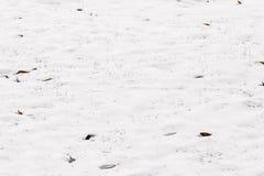 Um fundo nevado vazio no inverno Foto de Stock