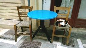 Um gato disperso encontra-se em uma cadeira perto de uma cafetaria O centro histórico de Rethymnon na ilha da Creta foto de stock