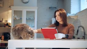 Um gato está obtendo afagado por uma senhora com um braço robótico filme