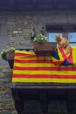 Um gato para a independência Fotografia de Stock Royalty Free