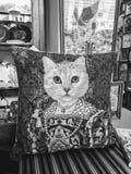 Um gato Queenly foto de stock