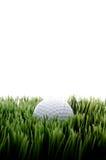 Um golfball branco na grama verde imagens de stock royalty free