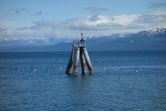 Um grande empilhamento na maré baixa Foto de Stock Royalty Free