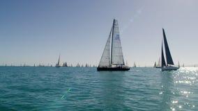 Um grande número de veleiros no mar filme