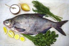 Um grande peixe vivo do rio da brema pesca o encontro em um fundo de papel com e em fatias de limão e com aneto de sal Fotos de Stock