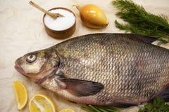 Um grande peixe vivo do rio da brema pesca o encontro em um fundo de papel com e em fatias de limão e com aneto de sal Imagens de Stock