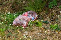 Um grande saco de plástico encheu-se com o desperdício junto com um número de garrafas de vidro que foram despejadas ilegalmente  Foto de Stock