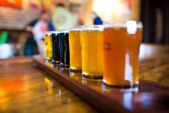 Um grupo da variedade de luz e de obscuridade das cervejas do ofício imagens de stock royalty free