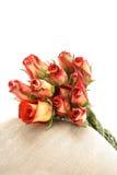 Um grupo das rosas Fotografia de Stock