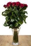 Um grupo das rosas Imagens de Stock Royalty Free