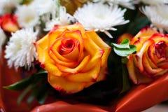 Um grupo das rosas e do crisântemo branco foto de stock royalty free