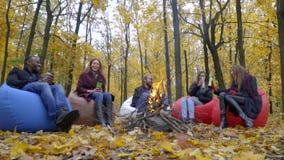 Um grupo de amigos senta-se na frente de um fogo em sopros, ri-se e bebe-se da garrafa térmica, movimento lento filme
