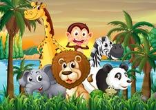 Um grupo de animais no riverbank com árvores de coco Imagem de Stock Royalty Free