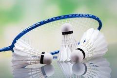 Um grupo de badminton Pá e a peteca Imagem de Stock Royalty Free