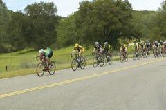 Um grupo de bicyclists da estrada Fotos de Stock Royalty Free