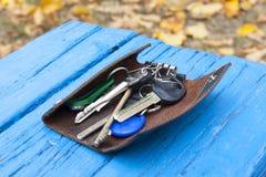 Um grupo de chaves em uma placa de madeira azul Imagens de Stock Royalty Free