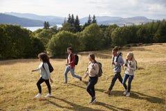 Um grupo de cinco amigos adultos novos sorri ao andar em um trajeto rural durante uma caminhada da montanha, vista lateral imagens de stock royalty free