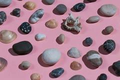 Um grupo de conchas do mar e de pedras fotografia de stock