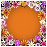 Um grupo de cores Fotografia de Stock Royalty Free