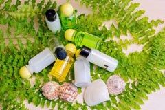 Um grupo de cosméticos dos termas com cockleshells Fotos de Stock Royalty Free