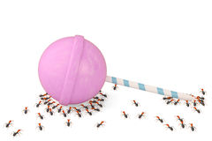 Um grupo de formigas com pirulitos ilustração 3D Fotos de Stock Royalty Free