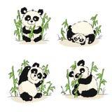 Um grupo de ilustrações com um filhote da panda Assento da panda, comer, jogando ilustração stock