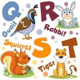 Um grupo de letras com imagens dos animais, palavras do alfabeto inglês Para a educação das crianças Partido 5 imagem de stock