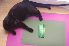 Um grupo de marcadores verdes no fundo verde com gato preto Foto de Stock