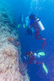 Um grupo de mergulhadores perto de uma parede coral foto de stock