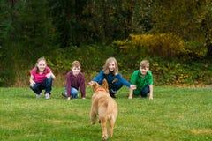 Um grupo de miúdos que chamam seu cão a eles. Imagens de Stock Royalty Free