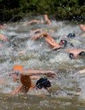 Um grupo de nadadores Fotografia de Stock