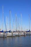 Um grupo de navios no beira-mar Foto de Stock Royalty Free