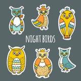Um grupo de pássaros de noite Fotografia de Stock Royalty Free