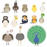 Um grupo de pássaros diferentes Um papagaio, um pinguim, um pardal, uma coruja Imagens de Stock