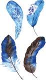 Um grupo de penas azuis da aquarela Foto de Stock Royalty Free