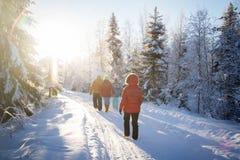 Um grupo de pessoas que anda na floresta do inverno fotos de stock royalty free