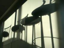 Um grupo de tamboretes de barra cria uma sombra bonita na parede de um gym foto de stock