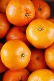 Um grupo de tangerinas foto de stock royalty free
