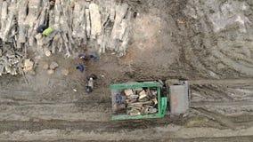 Um grupo de trabalhadores que carregam a madeira em um caminhão Desflorestamento, madeira de carregamento em um carro filme