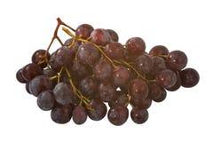 Um grupo de uvas Foto de Stock Royalty Free