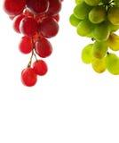 Um grupo de uvas Imagens de Stock
