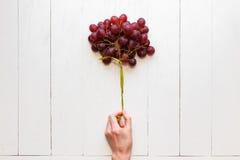 Um grupo de uvas amarradas com uma fita em uma mão do ` s da mulher em um fundo de madeira branco Vista de acima As uvas gostam Foto de Stock Royalty Free