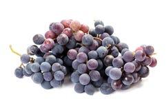 Um grupo de uvas pretas no branco Fotografia de Stock