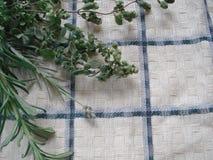 Um grupo de verdes frescos em uma toalha de cozinha Ramalhete de ervas picantes, composto dos alecrins, oréganos, alfazema Foto de Stock