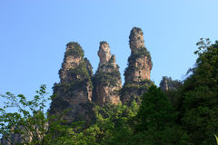 Um grupo do monte três alto em Zhangjiajie Imagem de Stock