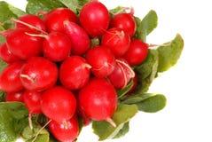 Um grupo dos radishes isolados no branco imagem de stock