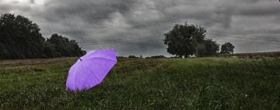 Um guarda-chuva Fotografia de Stock Royalty Free