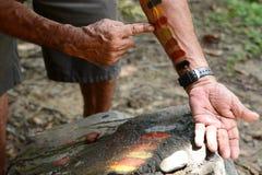 Um guia da comunidade aborígene que mostra o uso de cores tradicionais Mossman queensland austr?lia imagens de stock royalty free